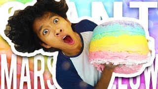 Gambar cover DIY GIANT Rainbow Marshmallow!!!