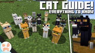 How To Tame A Stray Cat Minecraft