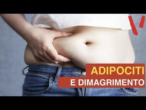 Qhht perdita di peso