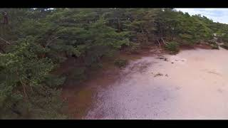 FPV 397 - Lets play a FPV Game: #DontDisArm in the Woods, fly Fast with a CineWhoop