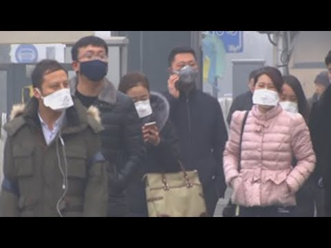 Worldwide Pollution Kills More than War, Smoking