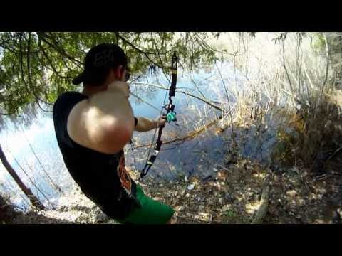 Underwater view of bowfishing, showing underwater spearfishing video, GoPro camera action footage