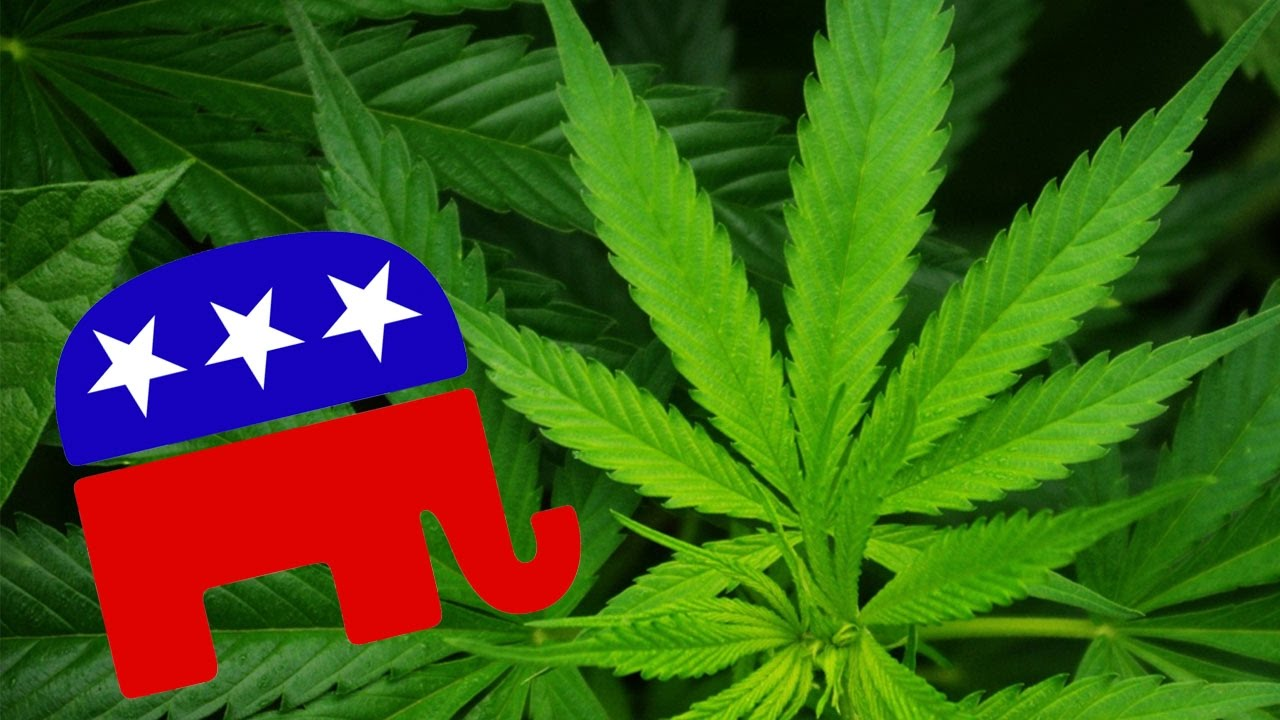Republicans Flipping On Legal Weed? thumbnail