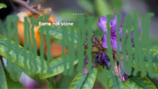 "Dialect – ""Flame Not Stone"""
