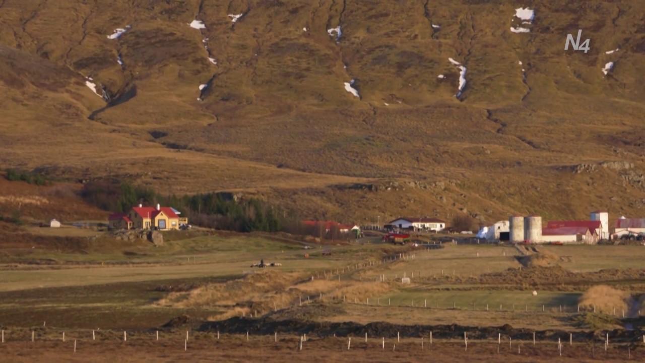 Eitt og annað af kindumThumbnail not found
