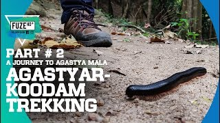 Agasthyarkoodam Trekking 2019   Part 2   A Journey to Agastya Mala   അഗസ്ത്യാർകൂടം   Fuze HD