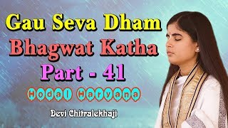 41 - Gau Seva Dham Katha - Hodal Haryana 22-06-2017 Devi Chitralekhaji
