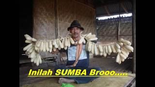 Inilah Sumba Broooo......