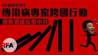 【中國與世界】傳染病專家跨國行動 搜集證據反擊中共
