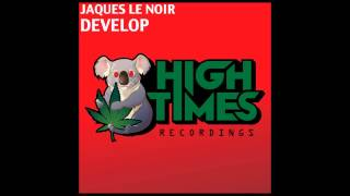 Jaques Le Noir - Develop (Original Mix)