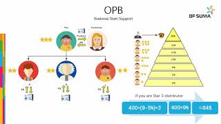 BF Suma Compensation and Marketing Plan (English)