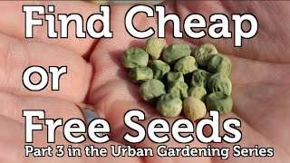 Easy and Free Seeds to Start your Garden off Right