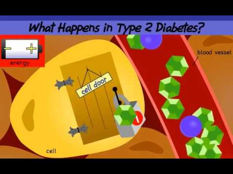 Rýže pro diabetiky