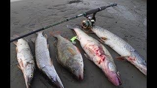 Рыбалка с лодок в отвес