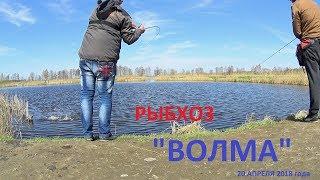 Платная рыбалка в минской области 2020 волма
