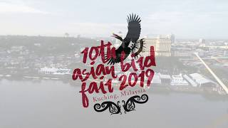 The sound of hornbills' echoes in the 10th Asian Bird Fair 2019