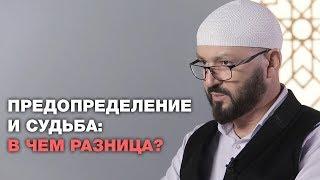 Предопределение и судьба: в чем разница?  Ислам и жизнь