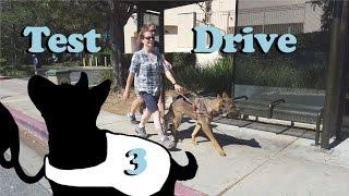 Guide Dog Test Drive 2.0 E3