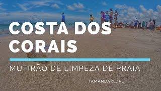 Mutirão de limpeza de praia em Tamandaré/PE