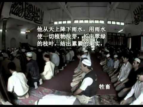 سورة الأنعام - الشيخ / عادل الكلباني - ترجمة صينية