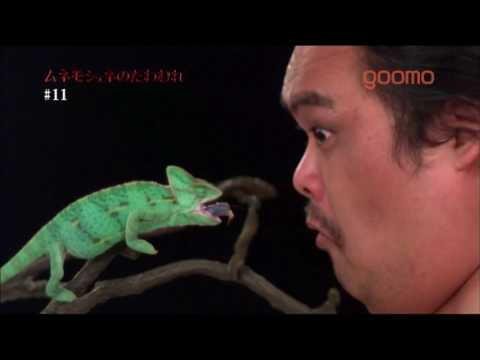 The Japanese Certainly Know How To Sell Slow-Motion Cameras