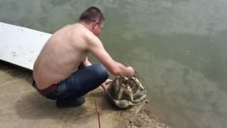 Рыбалка в солнечном ставропольский край