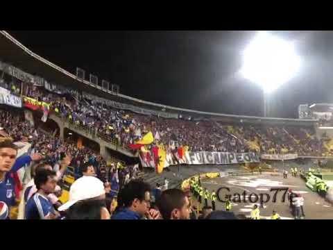 """Minuto 85 - En la tribuna"" Barra: Blue Rain • Club: Millonarios"