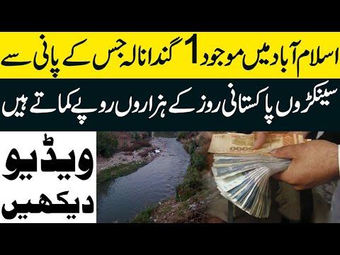 اسلام آباد میں موجود ایک گندا نالہ جس کے پانی سے پاکستانی روز ہزاروں پیسے کماتے ہیں:ویڈیو دیکھیں