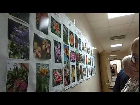 02.10.2019 Фотовыставка в коридоре Тат. ВОГ VID 20191002 132705
