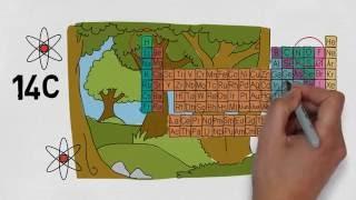 Die C14 Methode Einfach Erklärt! Wie Datiert Man In Der Archäologie