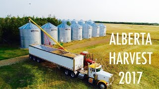Alberta Harvest 2017