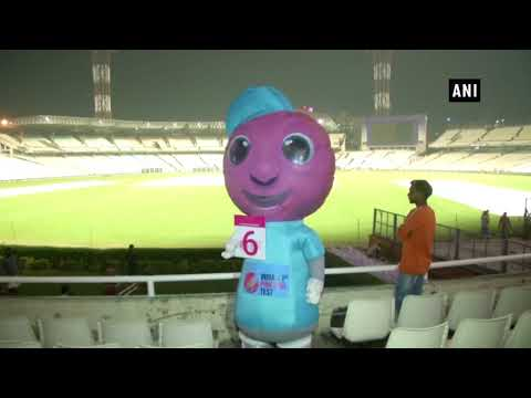 First D/N Test: Eden Gardens decorated with pink lights for pink-ball match