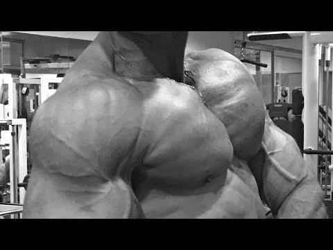 À quel régime des travaux des muscles