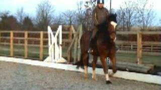 preview picture of video 'video of Charles flatwork by markirwing'