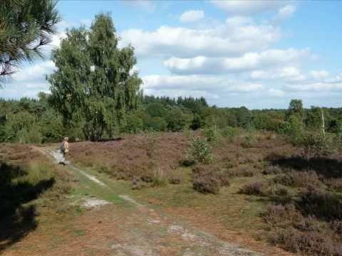 Pieterpad - wandeling van Millingen naar Vierlingsbeek