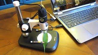 🔍review andonstar 500x 🔦8 led 2mp hd usb digital microscope
