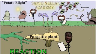 PLANT..HERPES???? PLANT DISEASES!  SAM O NELLA REACTION!