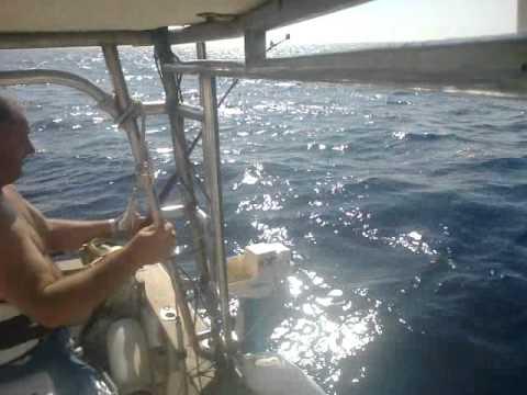 Comprare la materia plastica di barca per pescare per comprare