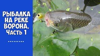 Форум рыбалка в тамбовской области