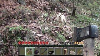 Minecraft en Vida Real EP23!!! Mi nuevo lobo!!!