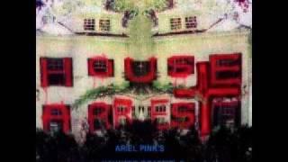 Ariel Pink's Haunted Graffiti - Every Night I Die at Miyagis