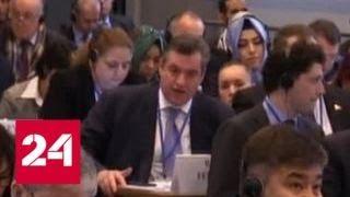 В Вене стартовала зимняя сессия Парламентской ассамблеи ОБСЕ - Россия 24