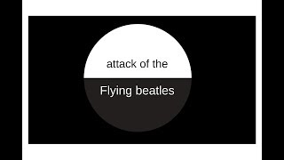 Attack of the flying Beatles...