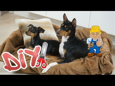 DIY Hunde Sofa | Dog couch || BiNu´s Diary