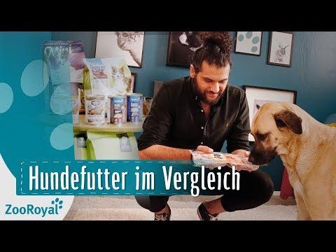 Hundefutter im Vergleich | Rund um den Hund mit Masih Samin | ZooRoyal