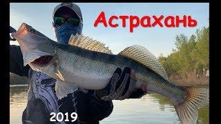 Рыбалка в астрахани 2019 год