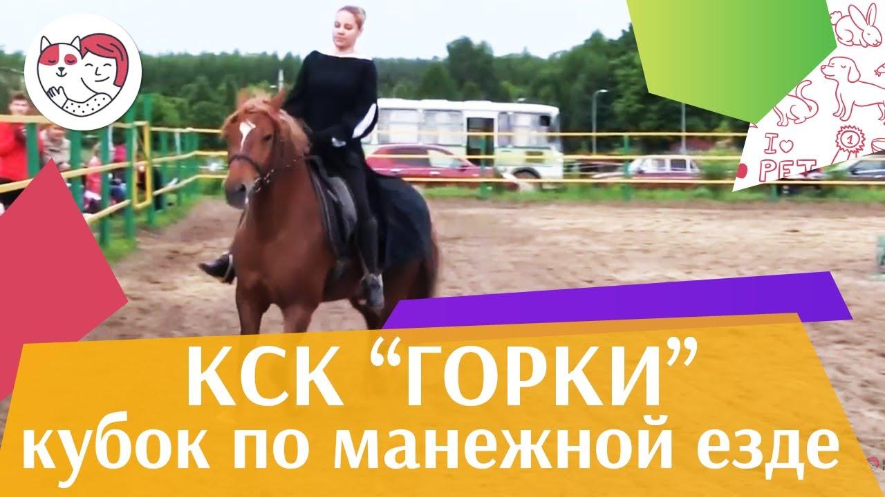Летний кубок КСК Горки по манежной езде КЮР часть 1 на ilikepet