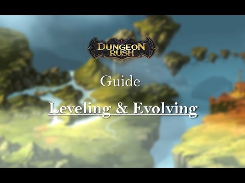 Dungeon Rush Guide. Leveling & Evolving.