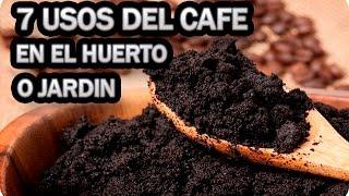 7 Usos Del Cafe En El Huerto O Jardin || La Huertina De Toni | Kholo.pk