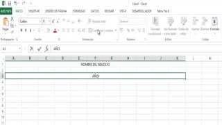 Como Crear un Flujo de Caja en Excel